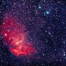 Tulip Nebula Cygnus x-1,                                John Rathbun