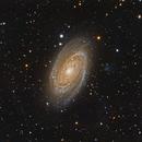 M81 Bode's Galaxy,                                Jerry Macon