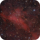 IC1318 northern  region,                                Jenafan