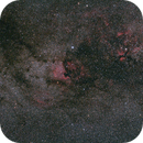 North American and Pelican Nebula Widefield,                                Poochpa