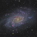 M33 - Triangulum Galaxy,                                Mikko Viljamaa