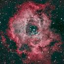 Rosette nebula ngc 2244,                                Jganz
