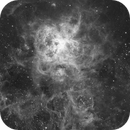 NGC 2070 Ha,                                Ben S Klerk