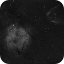 IC1396 with Sh2-129,                                Adrenaline