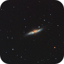 M82 (Feb 15),                                Trevor Nicholls
