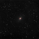 NGC 3923,                                Mark Sansom