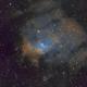 Bubble Nebula,                                Wayne