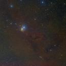 IC348 and nearby dark nebulae,                                Wilson Yam
