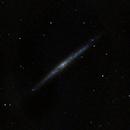 NGC 4244,                                Vijay Vaidyanathan