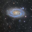 Bode's Galaxy and IFN 2017,                                Alberto Pisabarro