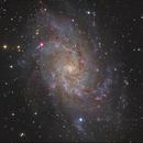M33 Galaxy,                                Jens Zippel