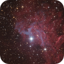 The Fume of the Flaming Star Nebula (IC 405),                                Marcel Nowaczyk