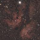 IC1318 Butterfly Nebula in Cygnus,                                Richard Cardoe