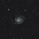 M101 Pinwheel Galaxy,                                Michael Völker