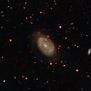 NGC 4725 in Coma Berenices a Barred Spiral Seyfert Galaxy,                                jerryyyyy