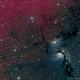 M78 (NGC2068) Reflection Nebula - Stardust & Starlight in LHaRGB (2 Data Sets),                                Richard Bratt