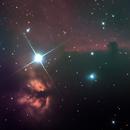 Horse Nebula,                                camaelon