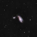 NGC 4490 Cocoon Galaxy #1,                                Molly Wakeling
