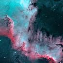 The Great & Beautiful Cygnus Wall,                                Rachel Brooks