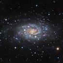 NGC 2403 - Intermediate Spiral Galaxy,                                Dhaval Brahmbhatt