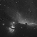 IC434 Nebulosa Testa di Cavallo,                                Ernesto Nobili