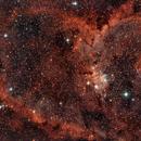 Heart Nebula,                                Steve Lenti