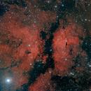 IC1318, a WF color image,                                Niels V. Christensen