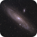 M31 with TS 86 SDQ,                                Stephan Linhart