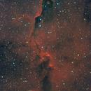 IC 1396A - Elephant´s trunk nebula,                                Dagolaf