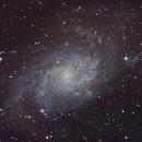 M33 - Galaxia del Triángulo,                                Luis Martinez