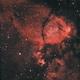IC 1795,                                Mike Kline