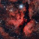 Sadr and IC1318 The Gamma Cygni Nebula,                                Andrea Pistocchini - pisto92