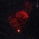 The Jellyfish Nebula, IC443,                                Steven Bellavia