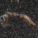 NGC 6992 - East Veil Nebula,                                Yannic Delisle