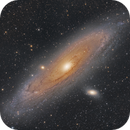 M31 - First light with 2600MC / RASA 8,                                Tristan Campbell