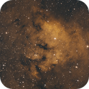 NGC 7822,                                  Roswell Astronomy