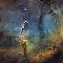 The Elephant Trunk Nebula,                                Jay Hall