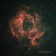 Rosette Nebula,                                Loran Hughes