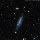 NGC 4236,                                Jean Guy Moreau