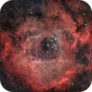 Rosette Nebula (Caldwell 49),                                Henning Schmidt