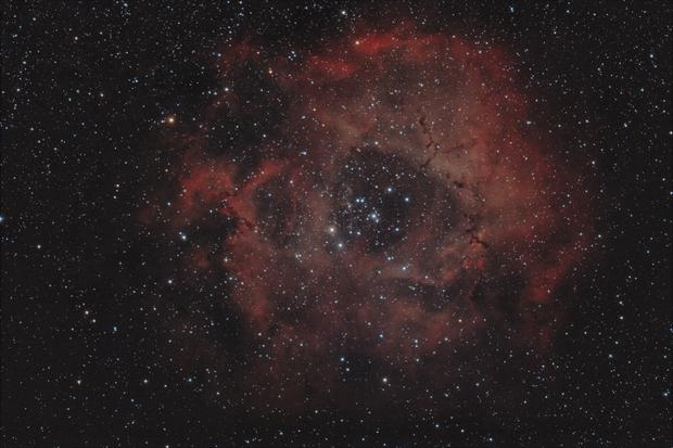 The Rosette Nebula,                                Vincent