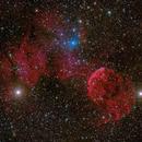 IC 443, 444,                                Wei-Hao Wang