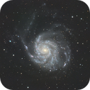 M101 - Pinwheel Galaxy,                                Bill Long