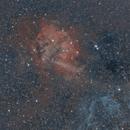 SH2-132 - The Lion Nebula,                                Eric Watson