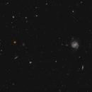 The Messier 100 spiral galaxy and its surroundings,                                Francesco Meschia