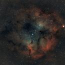 The Elephant Trunk Nebula (Rework),                                Earl Hebert