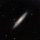 NGC253,                                Chris Vaughan