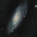 M 106 Galaxie spirale dans la constellation des Chiens de Chasse,                                Roger Bertuli