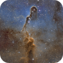 IC 1396 Elephant Trunk in SHO Hubble Palette,                                Thomas Hellwing