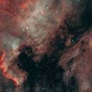 Bird on the Wall (IC5070 & NGC7000),                                  Gary Lopez